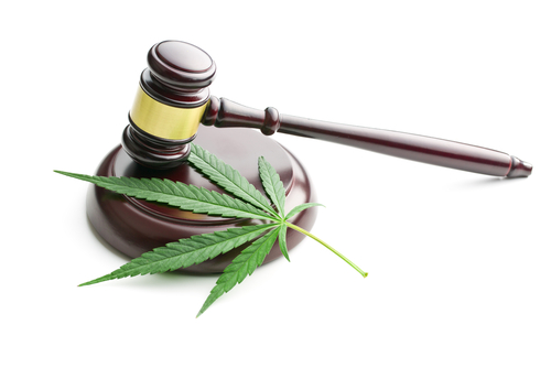 SB 618 Addresses Marijuana Users